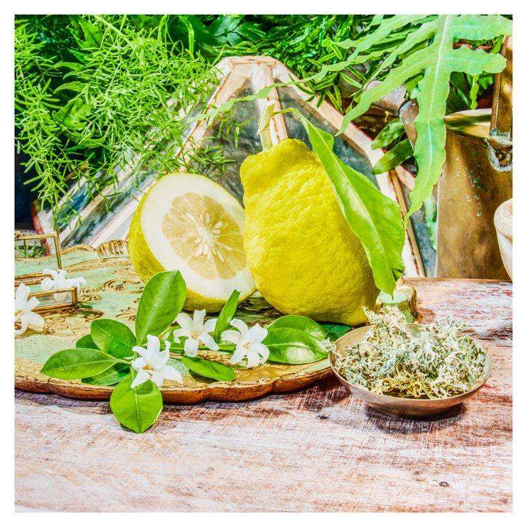 GUCCI煉金士花園系列香氛1921翡冷翠香水,特別選用鮮明的橙花油為主香調,並...