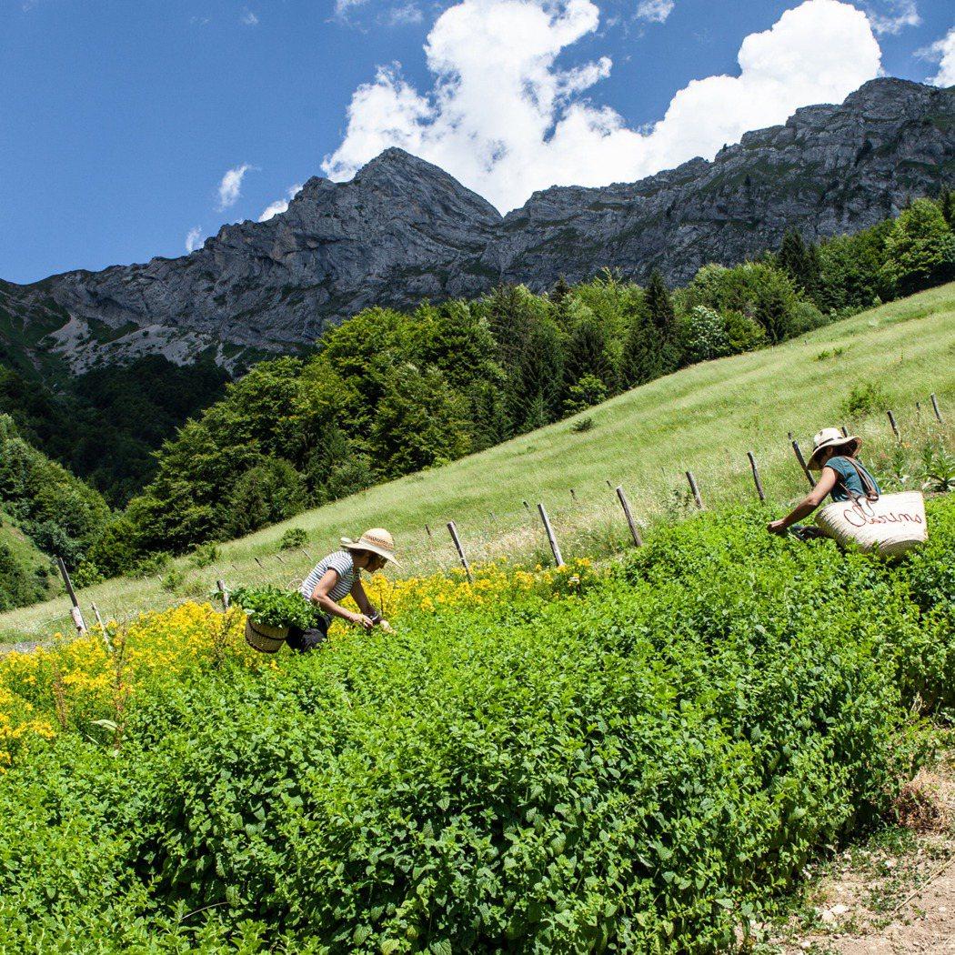 法國阿爾卑斯山上的「克蘭詩純淨之巔(Domaine Clarins)」,竭盡所能...
