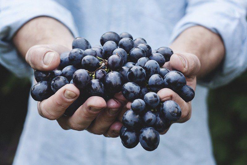 一名日本老翁失業壓力太大,徒手捏爆超市16顆水果。示意圖/Ingimage