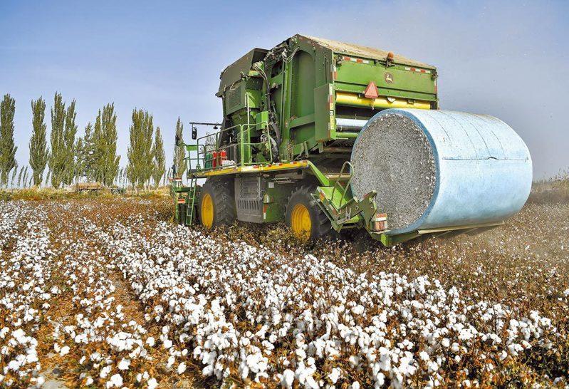新疆紡織協會稱,業界普遍用自動裝置,不存在強迫勞動。中新社