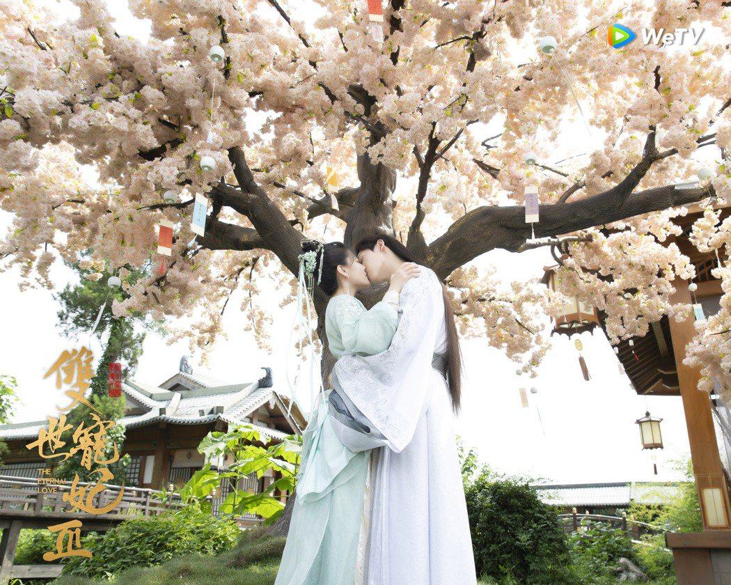 「雙世寵妃3」坦誠夫婦吻戲高達27場。圖/WeTV提供