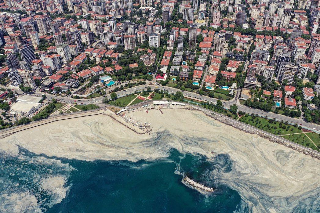 《路透社》的報導指出,工業和民用的汙水排放到海裡,因而增加了大量的營養物質,配合...