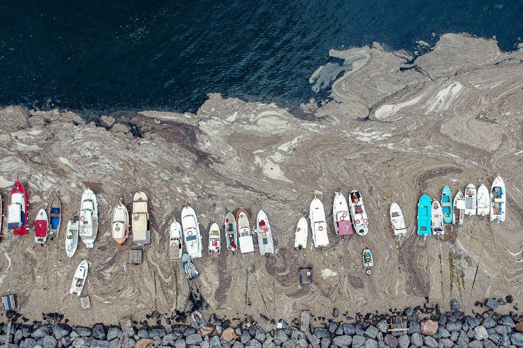 土耳其伊斯坦堡的馬摩拉海(Marmara)沿岸,當前正被規模史無前例的「海鼻涕」...