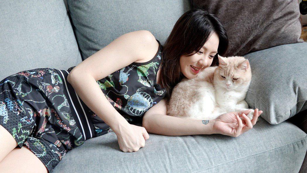 養了3隻貓的劉雨柔,沙發首選貓抓布材質的優渥實木「Poti波緹一字型沙發」,和毛...