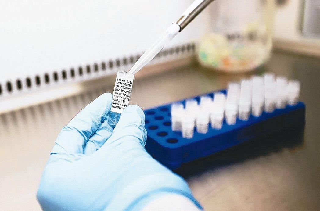 新藥陸續過關、6至8月醫學會議眾多,有利產業前景。(本報系資料庫)