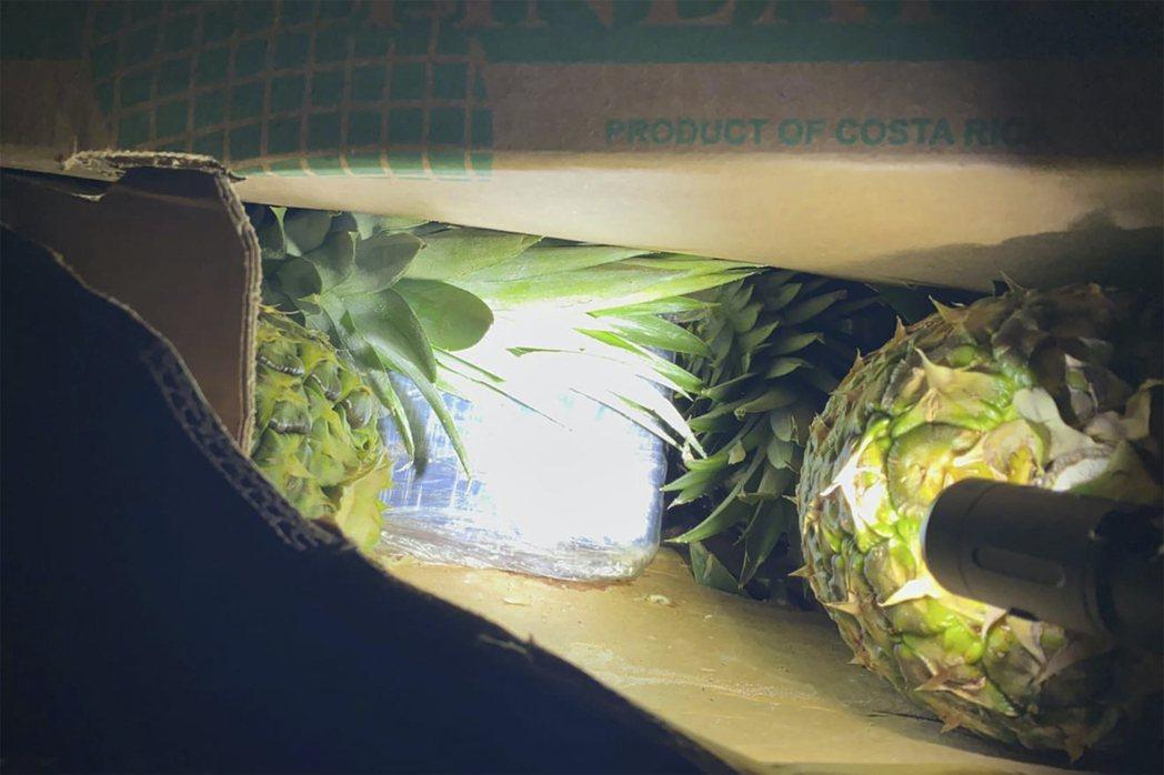 圖為警方查獲的空殼鳳梨,該鳳梨原本要用來藏古柯鹼並且運送到西班牙。 圖/Depa...