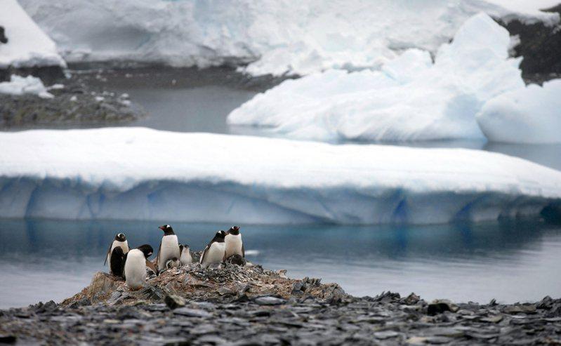 國家地理學會在「世界海洋日」這天宣布,南冰洋(Southern Ocean,又稱南大洋)正式成為地球的「第五大洋」。 圖/美聯社