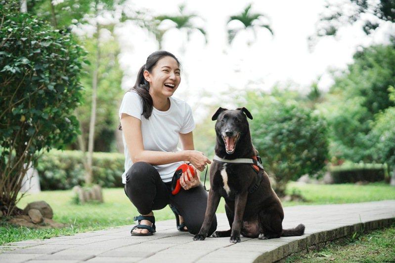 在都市生活的飼主普遍繁忙,寵物照顧服務協助分擔定時遛狗、餵食的照護需求。 (圖/毛小愛)