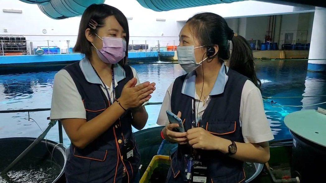 屏東海生館在零遊客的非常時期,每周三中午12時半在臉書推出「海洋小學堂」線上直播...
