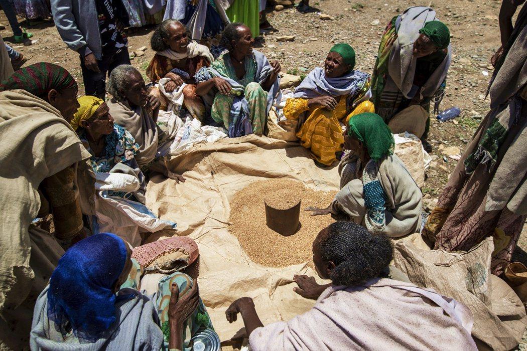 但對於聯合國的「糧荒」說法,衣索比亞中央政府卻堅持提格雷目前豐衣足食,反嗆有心勢...