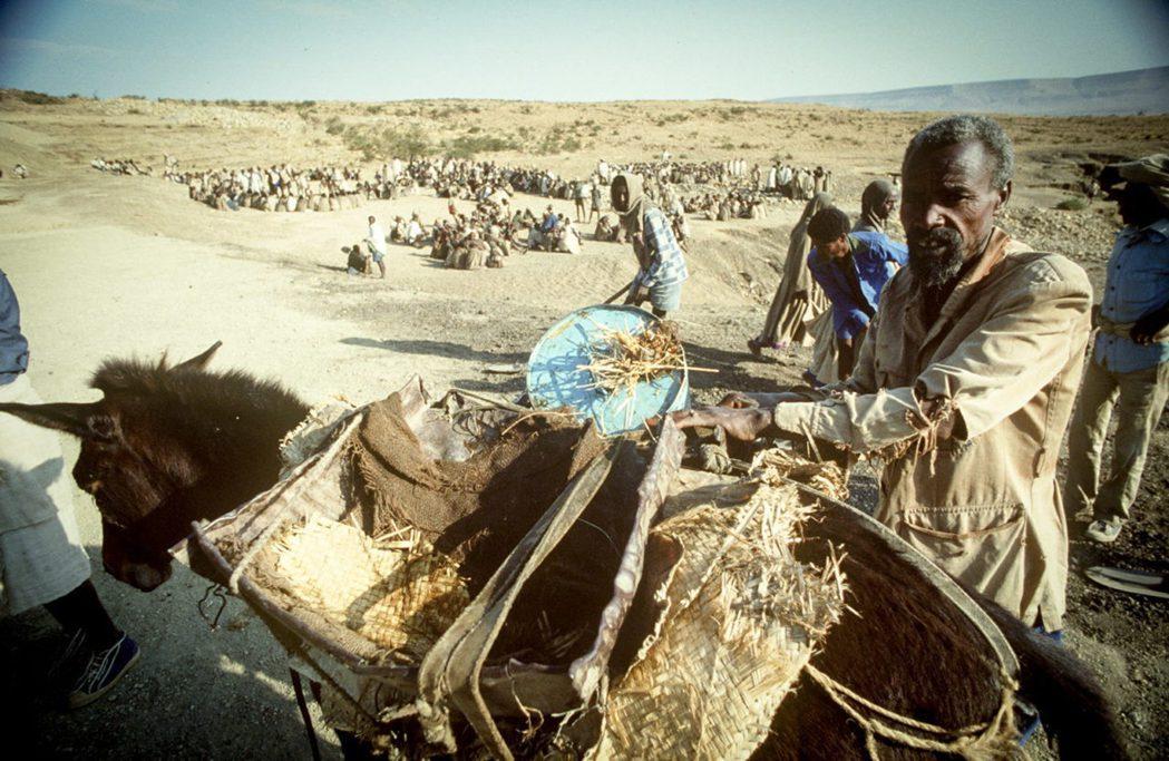 但聯合國為何不直接對提格雷州頒布最高級別「饑荒警報」?並藉此全力動員國際施壓搶救...