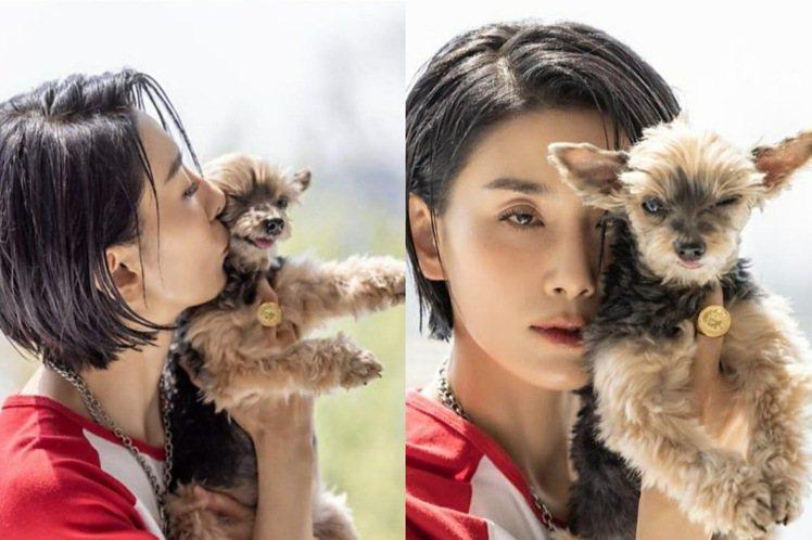 金瑞亨私下愛狗成痴。圖/摘自金瑞亨IG