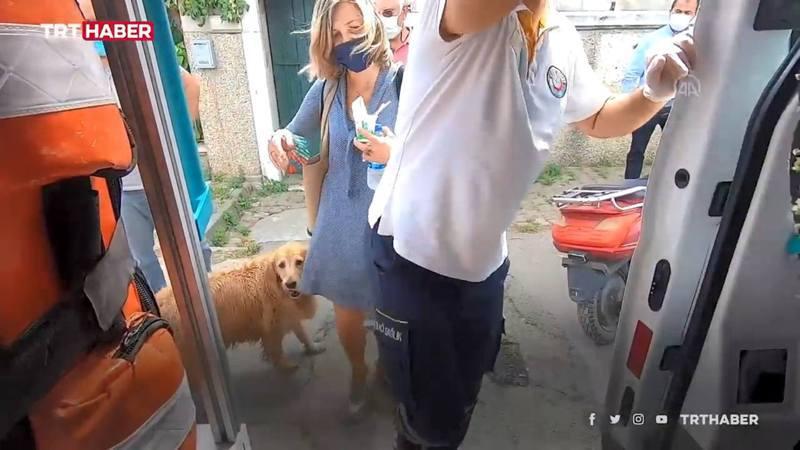 狗狗見主人上救護車時想跟上去,但被主人的友人拉住。圖/TRT新聞截圖