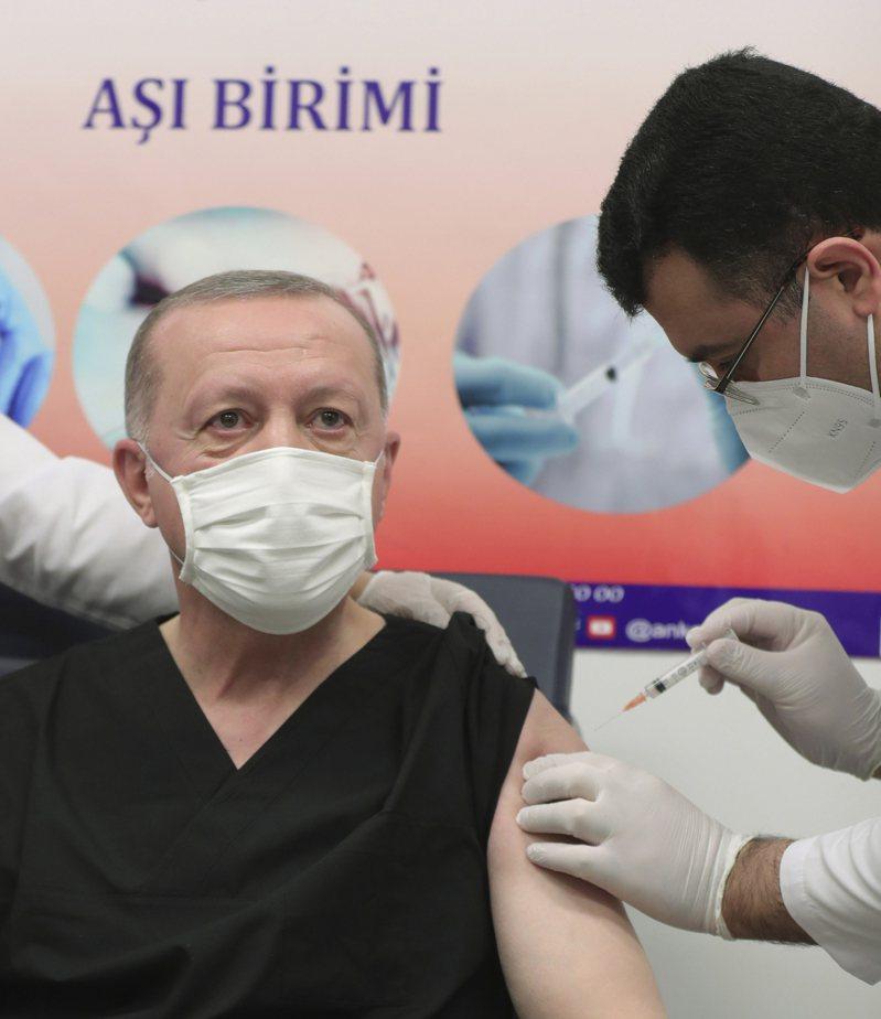 土耳其今天將有創紀錄的約75萬人接種2019冠狀病毒疾病疫苗。 美聯社