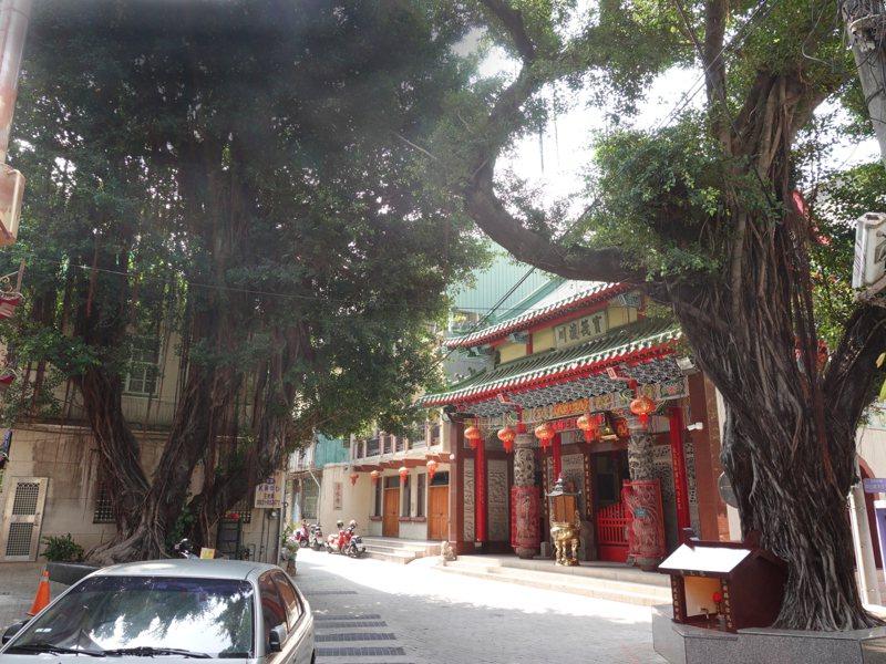 台南中西區清水寺旁老榕樹遭當年美軍轟炸逃過一劫。圖 /台南市政府農業局提供