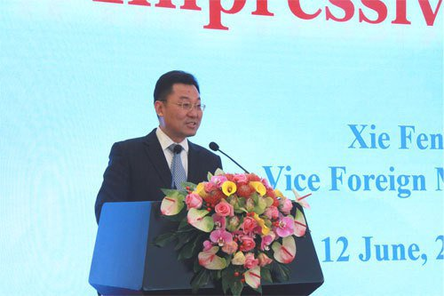 大陸外交部副部長謝鋒。大陸外交部網站