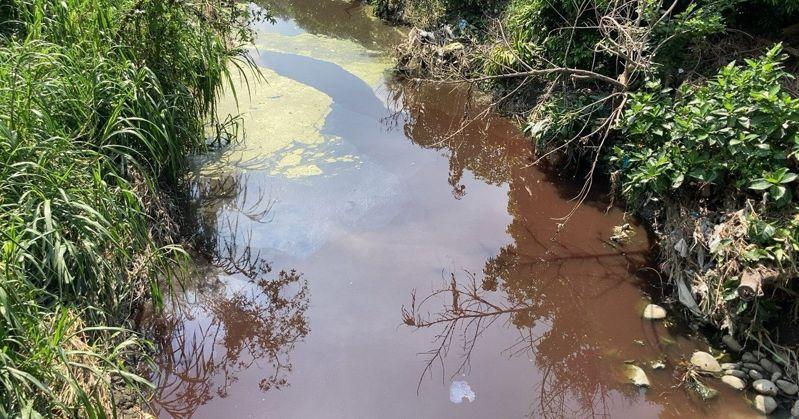 彰化縣溪湖區排在端午連假期的大雨前,忽然變成紅色,有血腥味。圖/民眾提供
