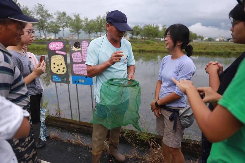 林芳儀(右2)與其他農業團隊交流誘捕福壽螺的經驗。圖/林芳儀提供