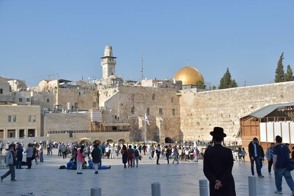 走在耶路撒冷所見到大自然的壯闊景觀,觀察到的民族矛盾,在書與旅行結合下,深深的感...