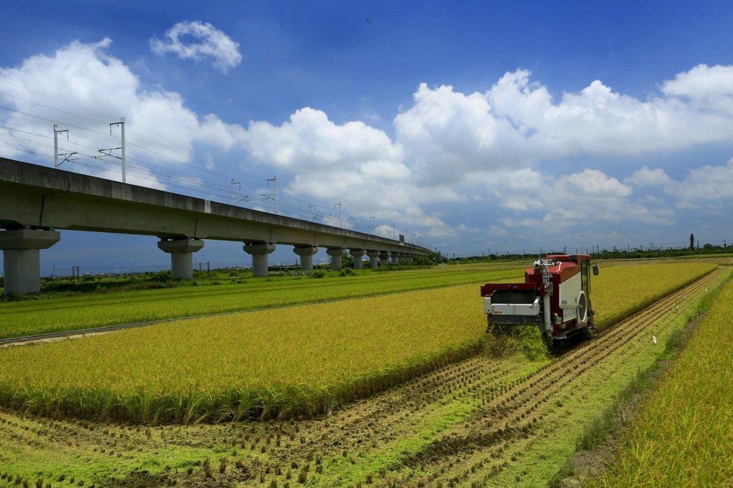 台南一期稻作收割進入尾聲,預估月底完成。圖 /台南市政府農業局提供