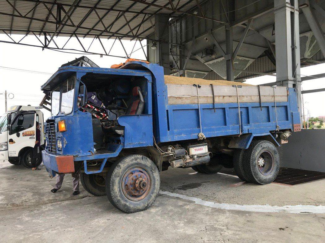 台南一期稻作收割進入尾聲,濕穀價優於去年。圖 /台南市政府農業局提供