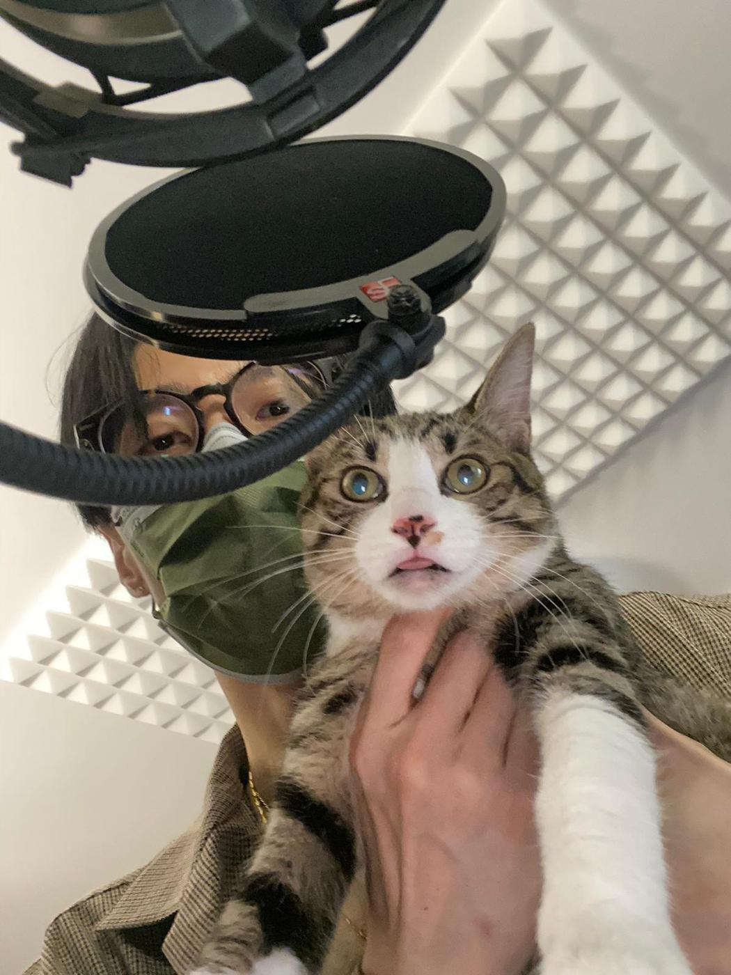 李英宏近期收編8個月大的愛貓吉利。圖/三點水音樂工作室提供