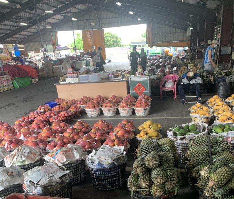 台南玉井青果市場芒果到貨量日增。圖/市場提供