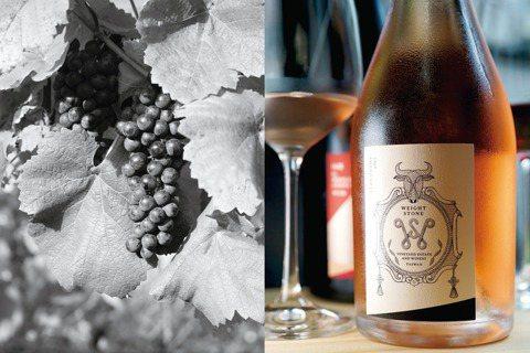 左:黑后葡萄。右:威石東酒莊GrisdeNoirs淡粉紅氣泡酒。 圖/積木文化提...