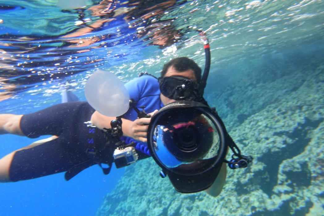 台灣首位水下鯨豚攝影師金磊。圖/牽猴子提供