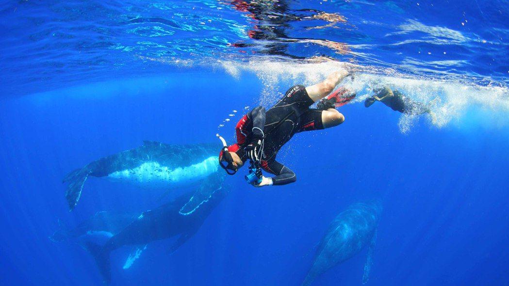 導演黃嘉俊拍攝台灣美麗海洋透過大銀幕感動數萬人。圖/牽猴子提供