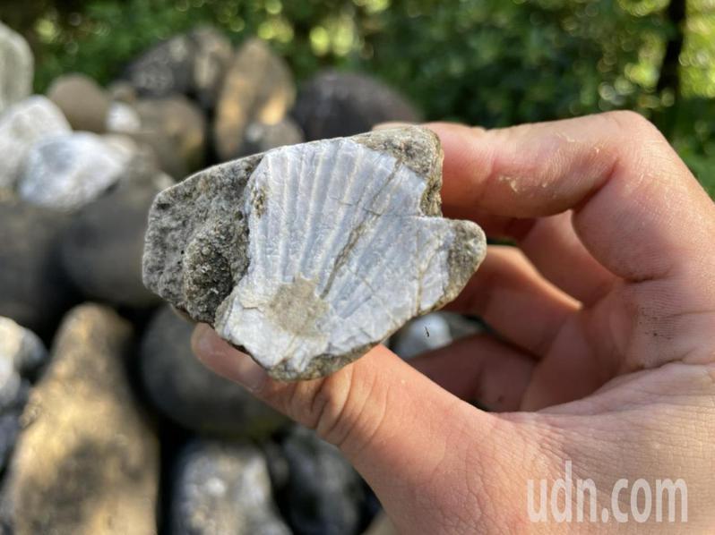 黃轟成不吝和遊客分享每顆石頭背後的故事。記者莊祖銘/攝影
