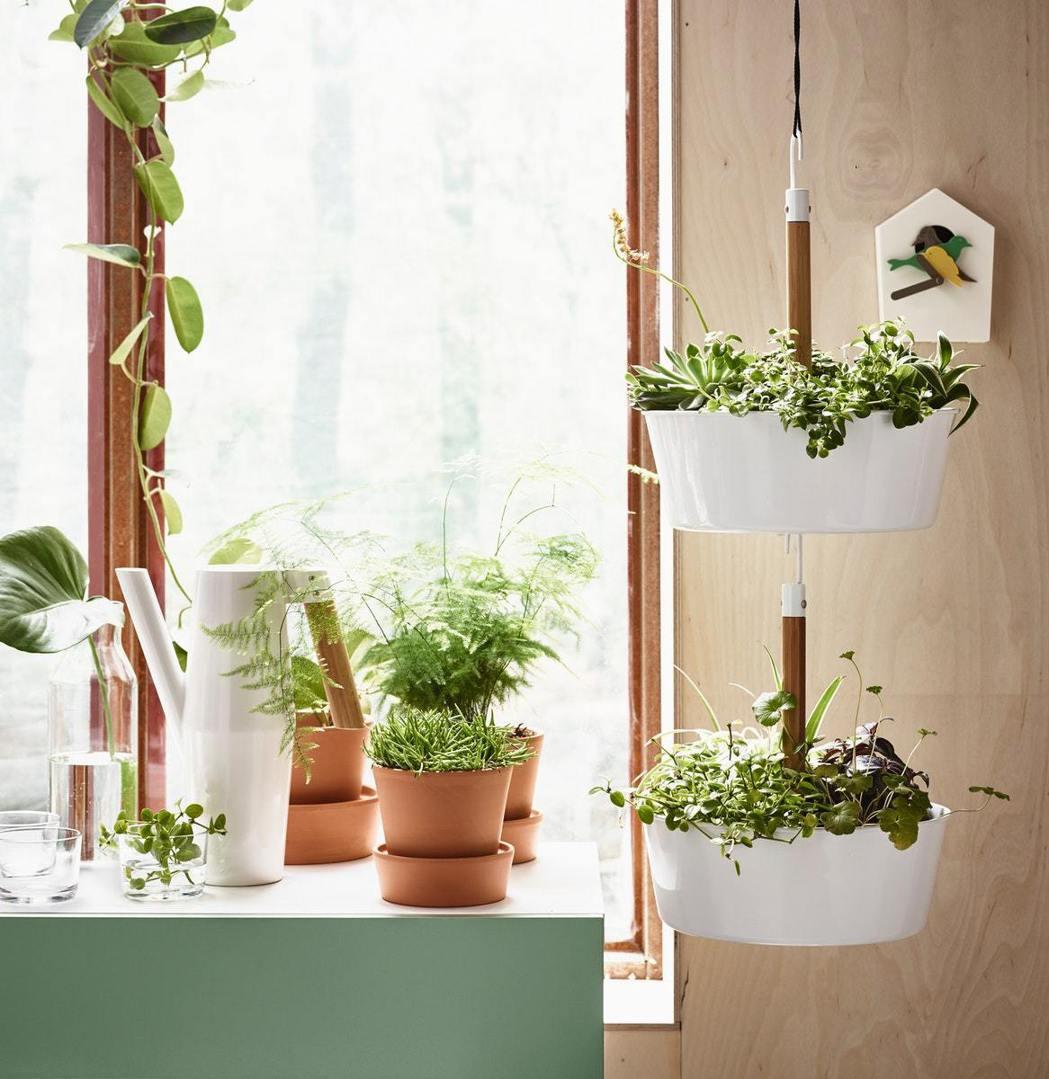 密閉空間待久了還是不免產生沈悶感,不少人選擇透過園藝來接近大自然,IKEA多樣植...
