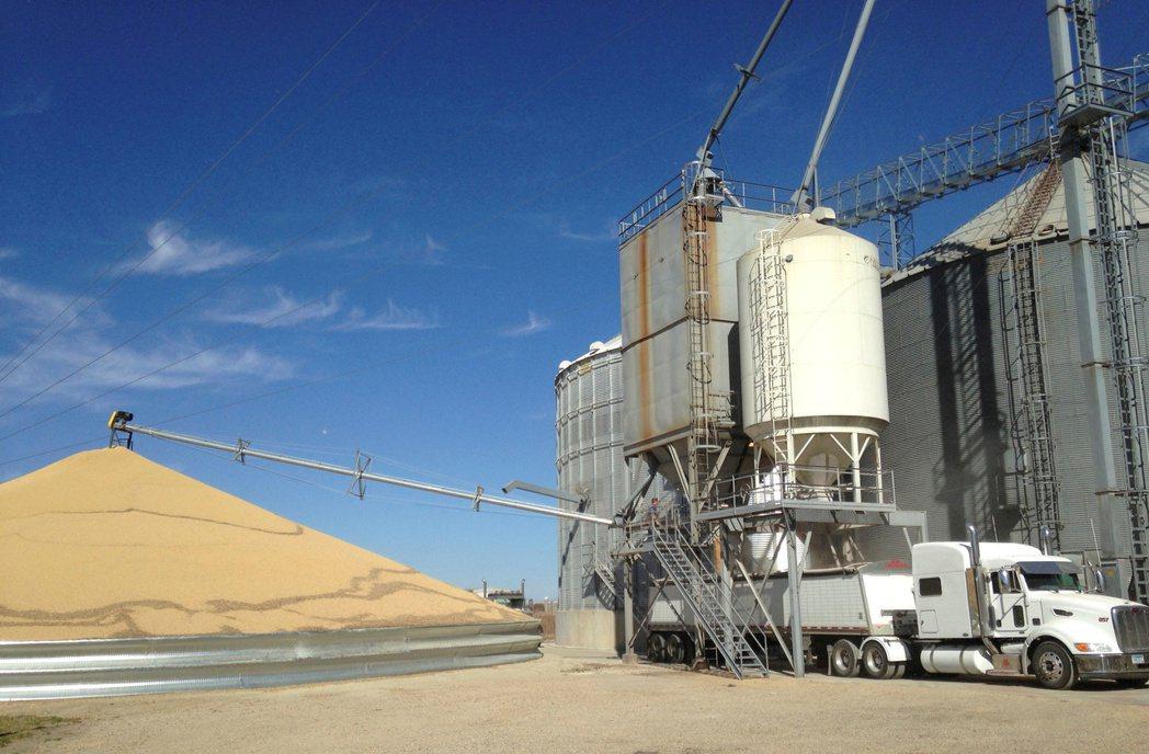 黃豆期貨已經吐回2021年的漲幅,較5月觸及的八年高點下跌超過20%。路透
