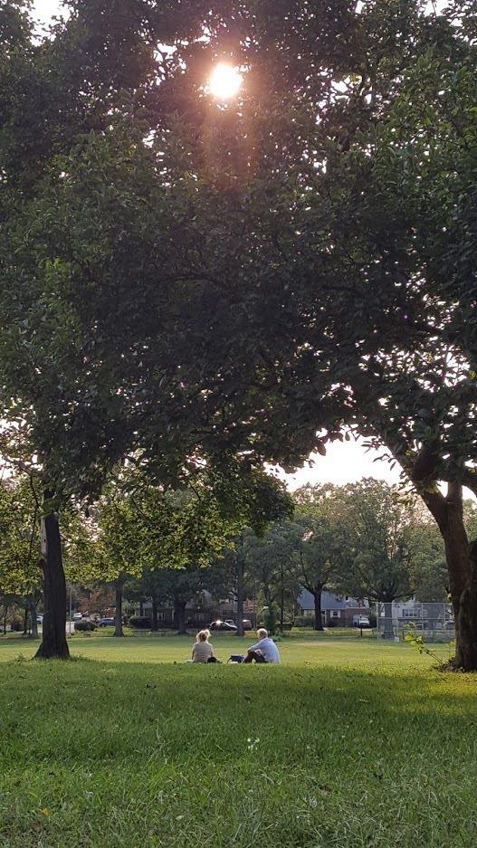 疫情期間坐在公園也要保持社交距離。圖/康錦卿
