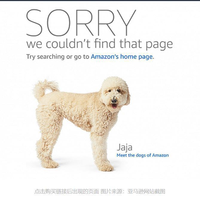 亞馬遜網站產品頁面變狗,意味著該產品鏈接被暫時或永久刪除。圖源:界面新聞