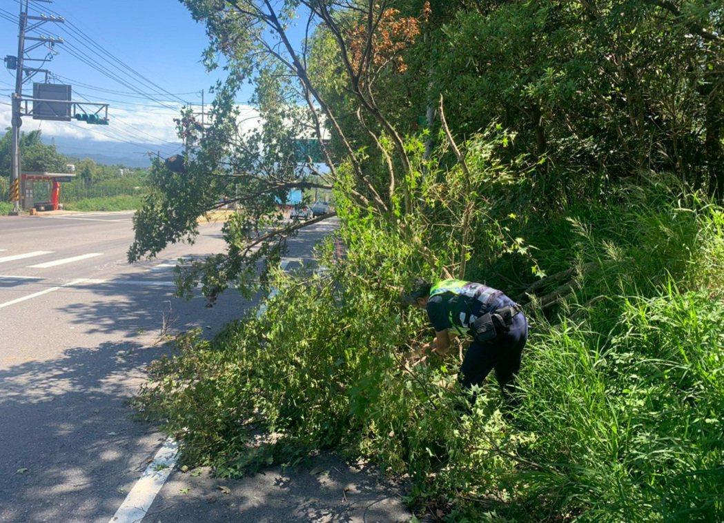 臺3線山坡樹倒影響交通,龍潭警方先清除部分樹幹。記者鄭國樑/翻攝