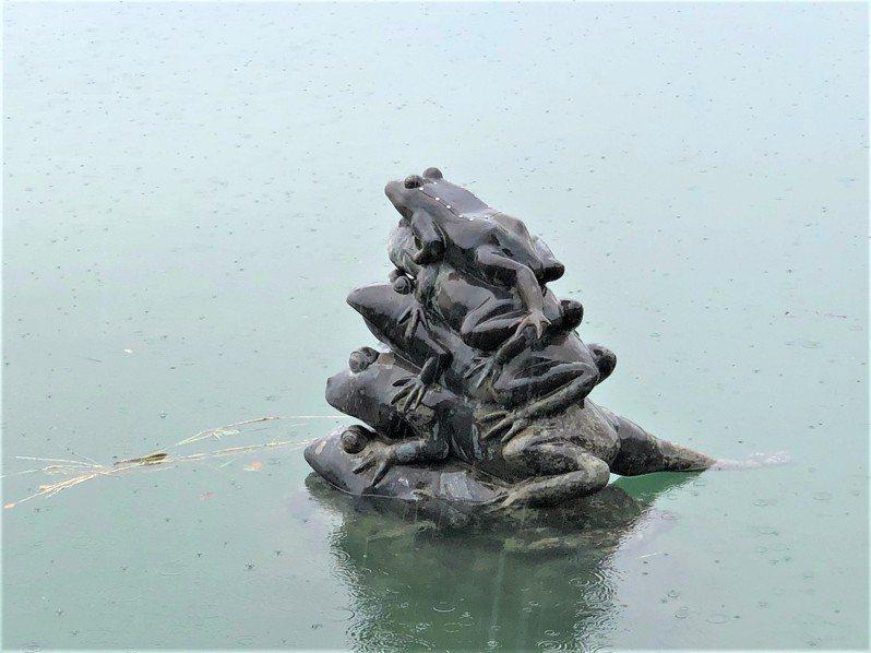 南投縣日月潭今晨大雨,水位上升到747.5公尺,九蛙疊像開心吃水,目前僅剩4隻半。圖/讀者提供