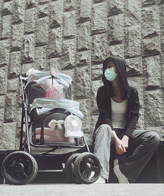 陳珮騏經常帶著毛小孩到攝影棚,陪著她一起工作。圖/摘自臉書
