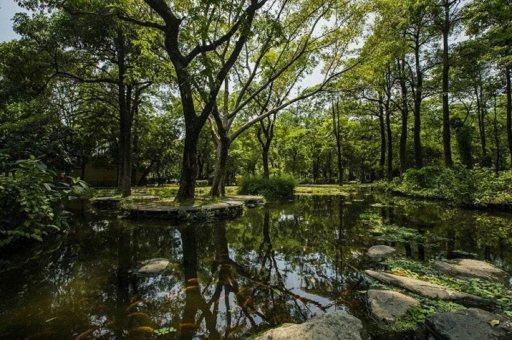 高雄市也有不少濕地公園,如大東濕地公園、林園海洋濕地公園等。 圖/高雄市觀光局提...