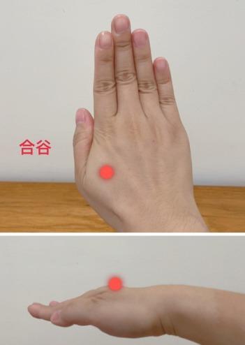 手掌的合谷穴具有疏散風邪、和胃通腸的功效。 圖/南投醫院提供