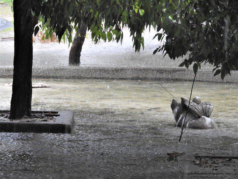 南投各地持續降雨,以草屯鎮累積雨量最豐,截至上午11時,全三名全落在草屯區域測站。記者賴香珊/攝影