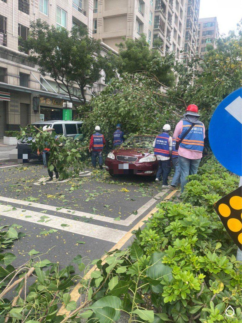 高雄市和平一路、四維二路口,本月9日下午一棵菩提木突倒下,壓傷車輛,苓雅分局民權路派出所警員第一時間到場處理。圖/讀者提供