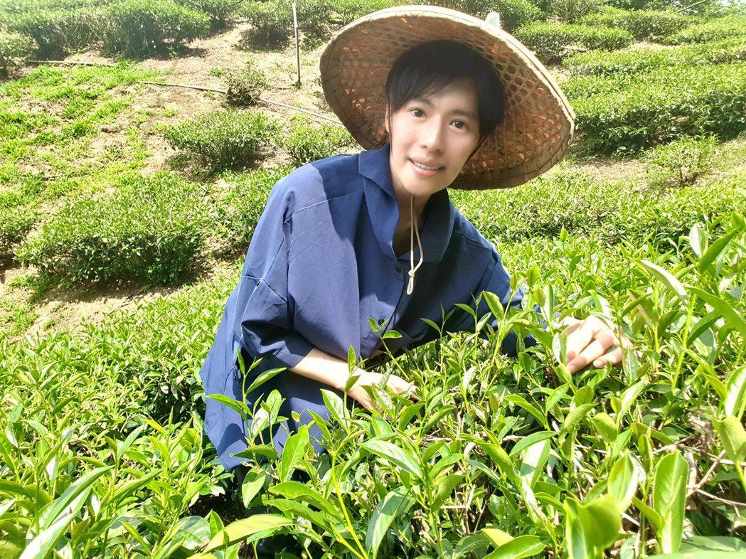 林語菲投入自家茶園化身小農幫忙採收茶葉、咖啡。圖/菲常動人音樂提供