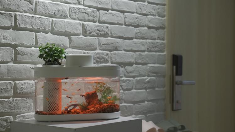 提供1,600萬種燈光的選擇,在家也能享受水族館般的視覺盛宴。圖/米客邦提供