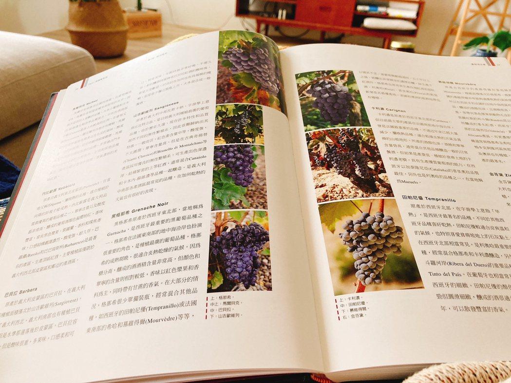 讀書,專業的食材、技法相關書籍和商管書都讀。 圖/Yen提供