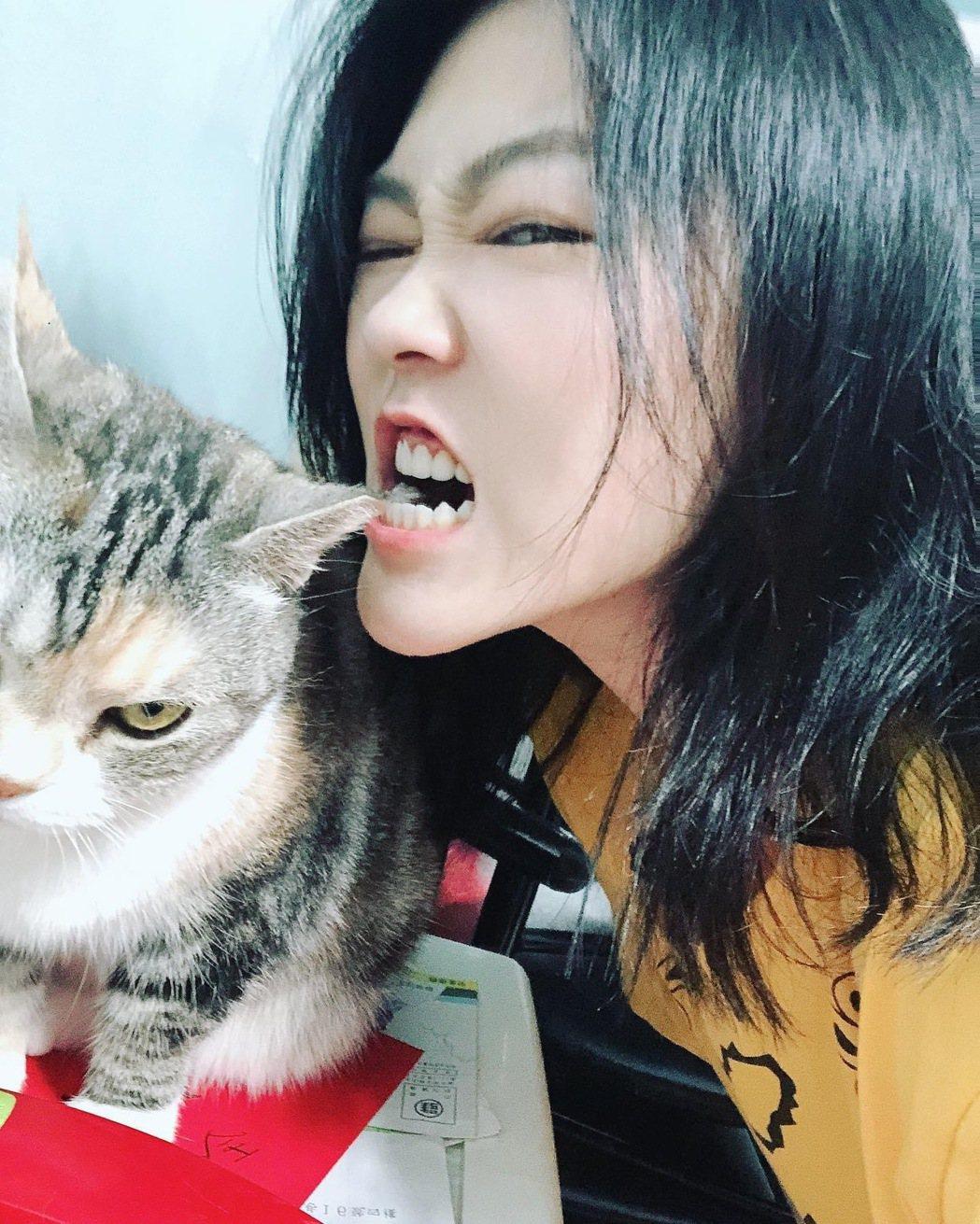 曹雅雯在家有愛貓陪伴。圖/好聞娛樂提供