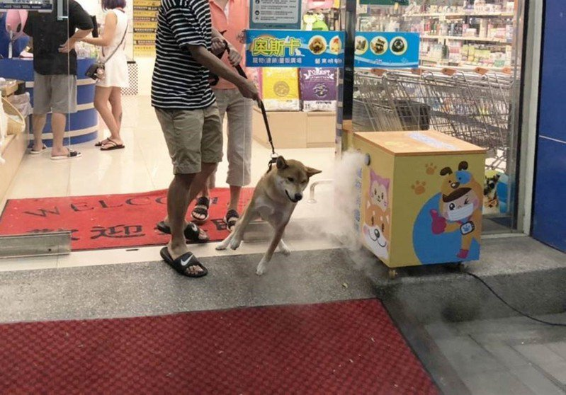 動保處在寵物健康生活站設置寵物消毒機。圖/新北市動保處提供
