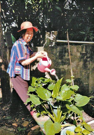 澆澆花木整理菜、修剪爬藤植物,也是做運動,又能美化環境。圖╱李啟華提供