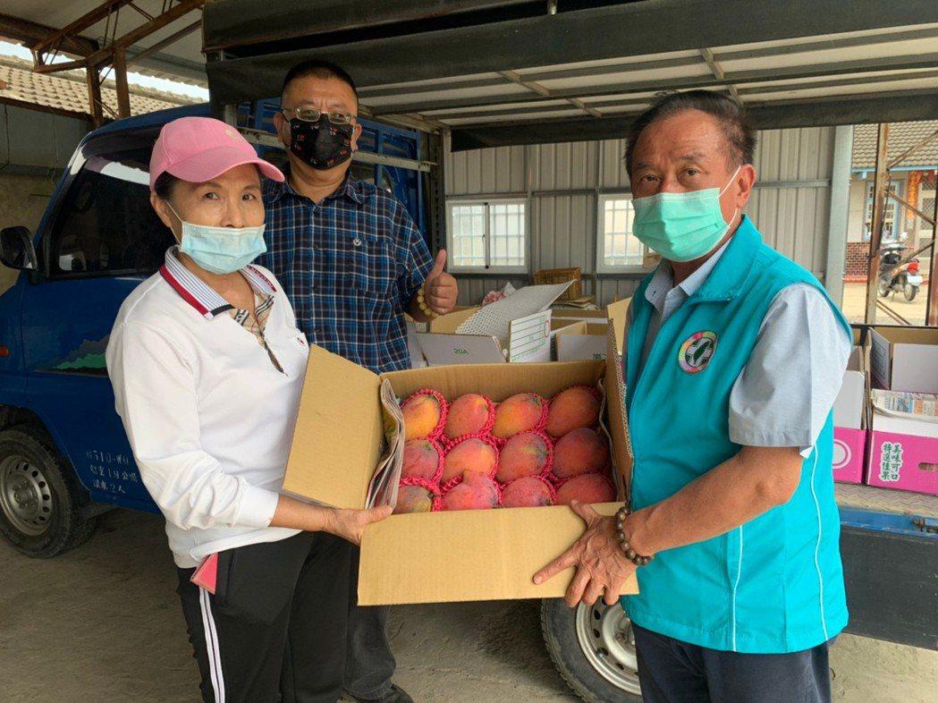 台南市議員吳通龍今天到大內區了解芒果生產情形也將號召企業購買捐贈醫護團隊。圖/吳...