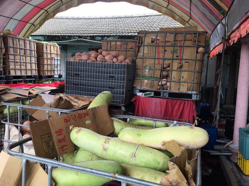 疫情衝擊,元長鄉農民李華藝栽種的有機南瓜和冬瓜,把賣剩的全數免費送給弱勢團體。記者蔡維斌/攝影